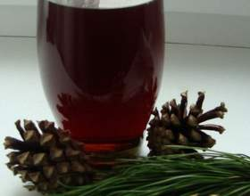 Лечебные настойки шишек на водке: рецепты приготовления фото