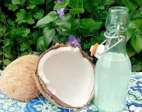 Ликер из кокоса: рецепт и с чем пить кокосовый ликер фото