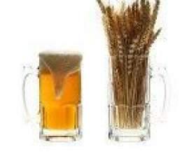 Мифы о пиве из порошка фото