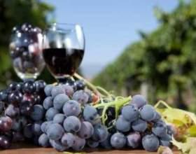 Наливка из винограда – еще один продукт виноградной лозы фото