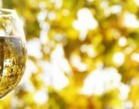 Напиток богов — белое сухое вино италии фото