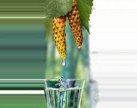 Настойка березовых почек спиртовая, на водке: применение фото