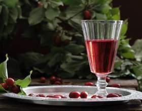Настойка из черемухи на водке: лечебные и застольные рецепты фото