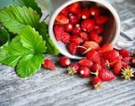 Настойка из ягод земляники фото