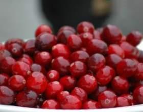 Настойка из жемчужин бессмертия – ягод брусники фото