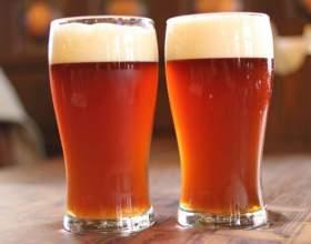 Нефильтрованное пиво: самые популярные марки фото