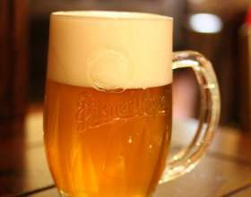 Организм человека и нефильтрованное пиво: вред и польза фото