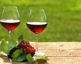 Осеннее вино из калины в домашних условиях фото