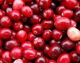 Освежающий фруктовый или ягодный морс фото
