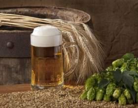 Отличный рецепт пшеничного пива фото