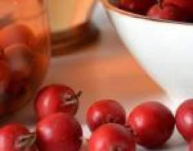 Питьевые настойки из ягод боярышника фото