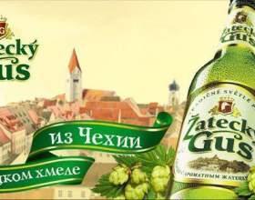 Пиво жатецкий гусь фото