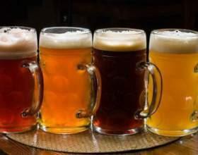 Сколько градусов содержится в пиве? фото