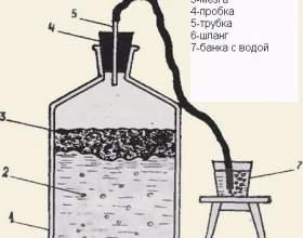 Правильная технология приготовления домашнего вина из яблок фото