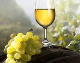Производство вина фото