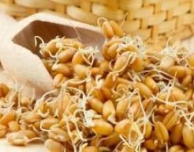 Рецепт браги на основе пшеницы фото