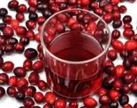 Рецепт брусничного вина фото
