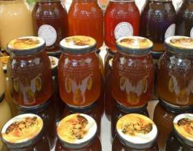 Рецепт медовухи в домашних условиях фото