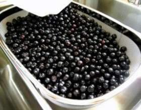 Рецепт настойки на черноплодной рябине фото