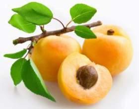 Рецепт приготовления домашнего вина из абрикосов фото