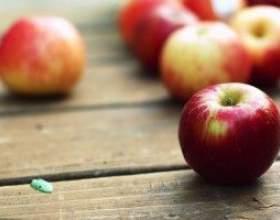 Рецепт вина из яблочного сока фото