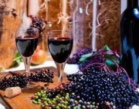 Рецепт вина из ягод и цветов бузины черной фото