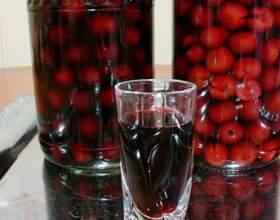 Рецепты ягодных, абрикосовых и других наливок в домашних условиях фото