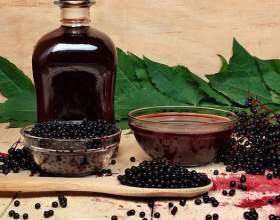 Рецепты рябиновой настойки на водке фото