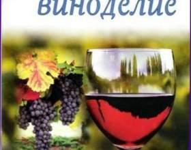 Рецепты вин из трав фото