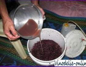 Рецепты виноградных вин с пряностями фото