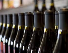 Есть ли будущее у российского виноделия? фото