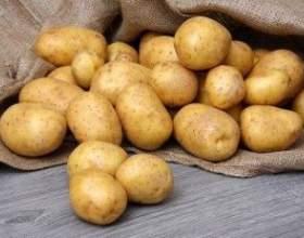 Самогон из картофеля простое экономичное решение фото