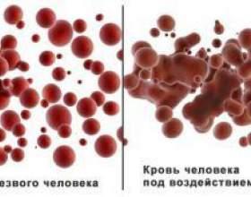 Сколько держится алкоголь от пива в крови? фото