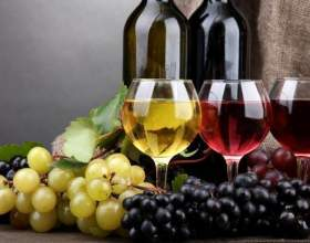 Сколько красного и белого вина можно пить в день? фото