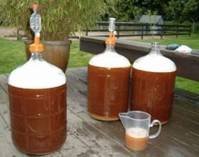 Сколько обычно бродит домашнее пиво? фото