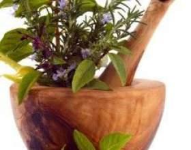 Травы для похудения – рецепты сборов и правила употребления напитков из них фото