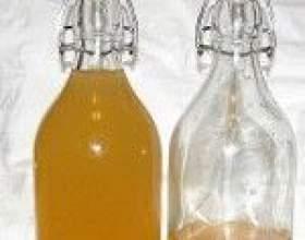 Три самых удачных рецепта домашних персиковых ликеров фото