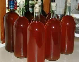 Узнайте, почему не бродит домашнее вино? фото