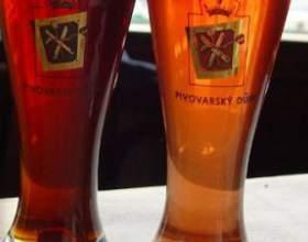 Виды пива – классификация любимого напитка фото