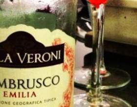 Вина и шампанское ламбруско – одно название и десятки ипостасей фото
