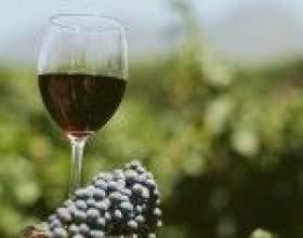 Вина из винограда мерло (merlot) – скромное обаяние классики фото