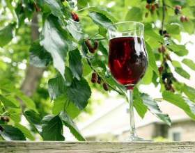 Вино из шелковицы – пора удивлять и удивляться самому фото