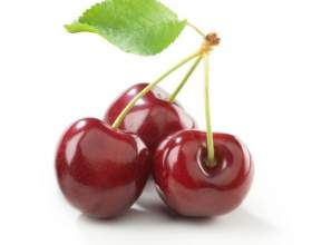 Вино из вишни в домашних условиях простой рецепт фото
