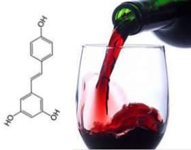 Вино - польза или вред? фото
