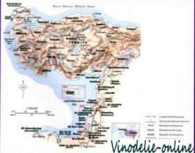 Виноделие в средиземноморье фото