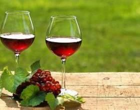 Вкусное и полезное вино из калины фото