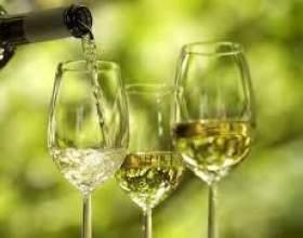 Столовое вино фото